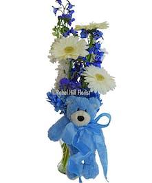 New Baby Bear, Blue