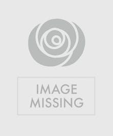 White Sympathy Spray featuring white gerbera daisies