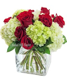 White and green hydrangea clustered with a dozen roses (choice of color) in a cube