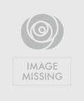 Bamboo Cross with Roses