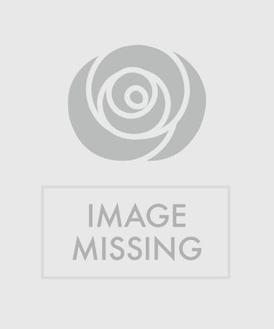 Arrangement of White Hydrea, Lilies, and Willow
