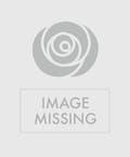 Eternal Harmony Cremation Urn Arrangement