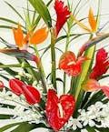 Designer's Choice Tropical Bouquet