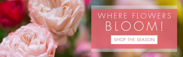 Nashville tn florist same day flower delivery rebel hill florist mightylinksfo Images