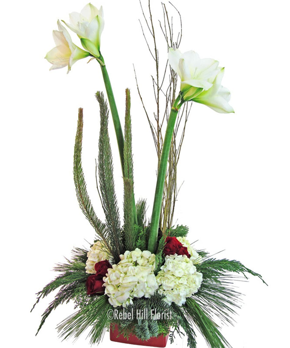 Amaryllis Accented with Hydrangea and Roses
